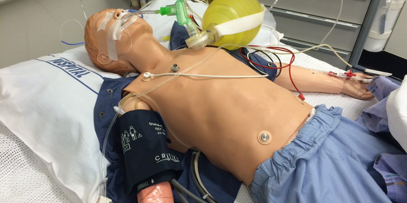 NZASH – Representing Simulation within New Zealand Healthcare